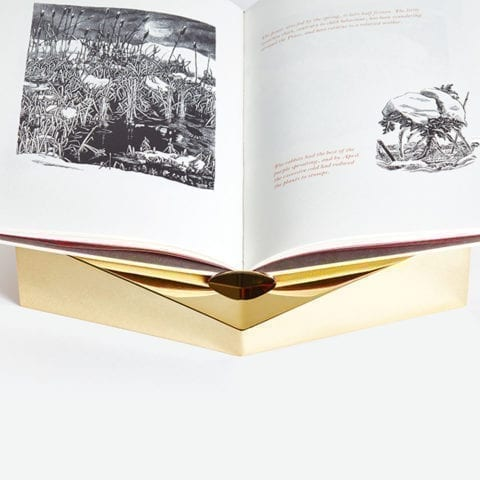 The invisible Collection Creations Dragonfly Golden Single Bookstand