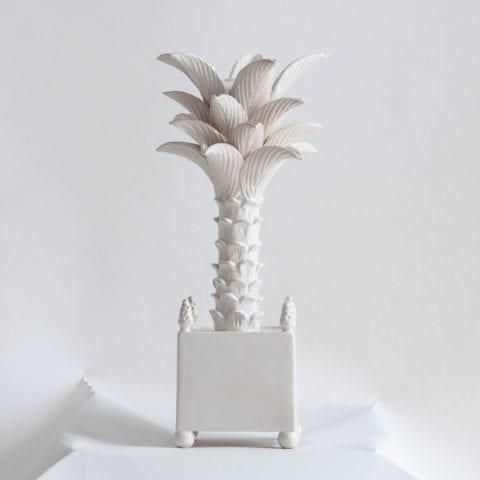 Palmier In Pot