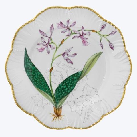 Histoires d'Orchidées – Set of 6 Dinner Plates