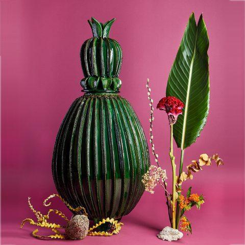 Crowned Cactus